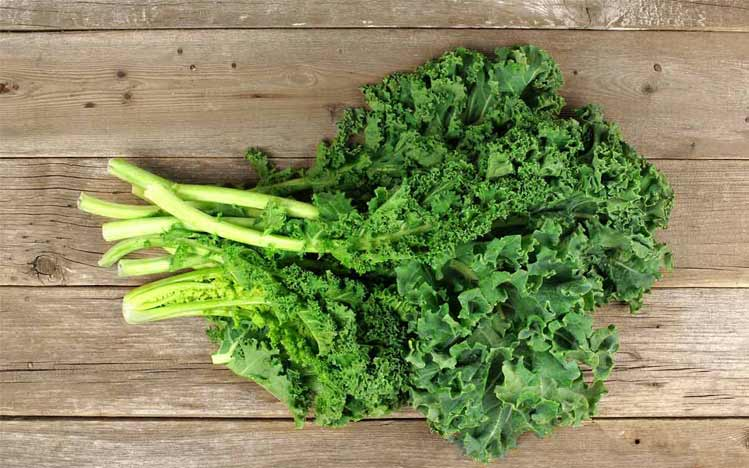 Caties-Organics-Whole-Plant-Foods-Kale-Saute