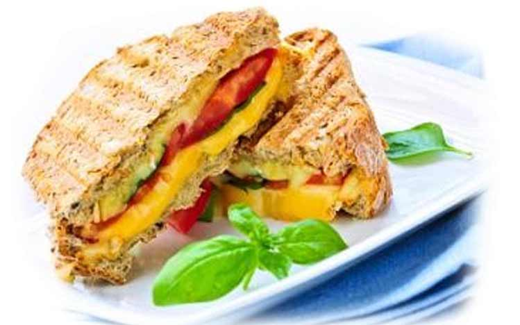 Caties-Organics-Whole-Plant-Foods-Vegan-Sundried-Tomato-Grilled-Cheese-Sandwhich