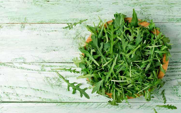 Caties-Organics-Whole-Plant-Foods-Wild-Salad