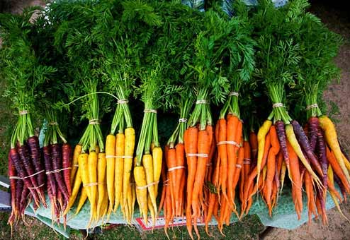 Caties-Organics-Whole-Plant-Foods-Lung-Health-Carrots