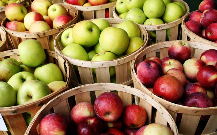 Cures-In-The-Kitchen-Catie-Norris-Organic-Fresh-Apple-Walnut-Milk